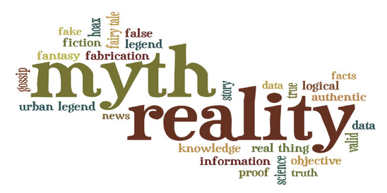 CYBER SECURITY MYTHS AND REALITY